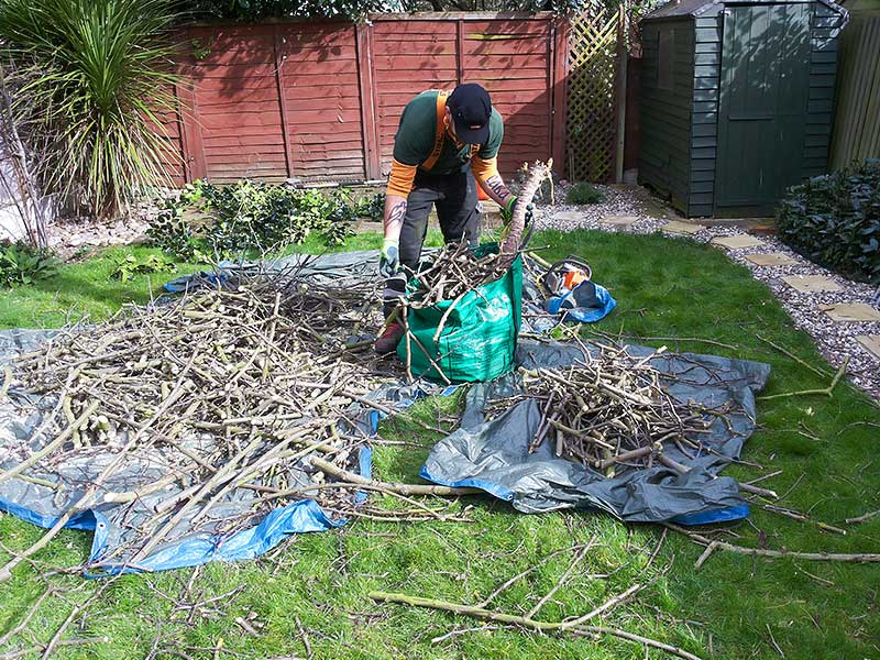 putting the branches and green waste in bags