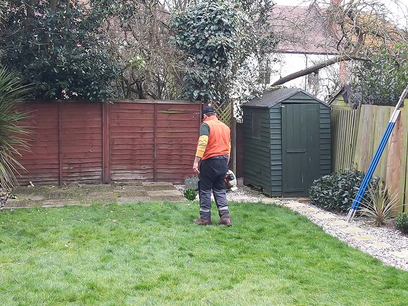 arborist using the leaf blower to take small tree pieces out of the lawn