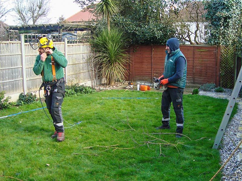 tree surgeon putting on his helmet