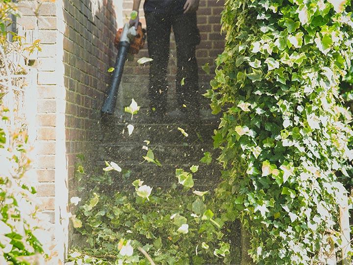 leaf-blowing garden stairs