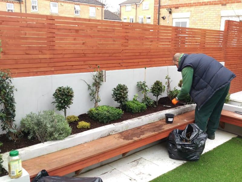 SW6 gardener planting flower