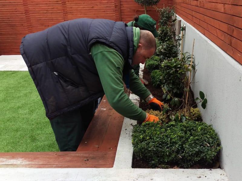 gardeners planting in SW6