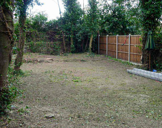 complete garden clearance service - after