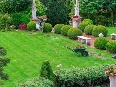 lawn care in croydon cr0
