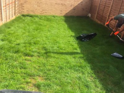 old lawn before turfing