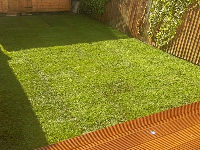 new turf laid in Clapham