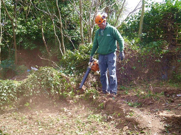 gardener in Islington