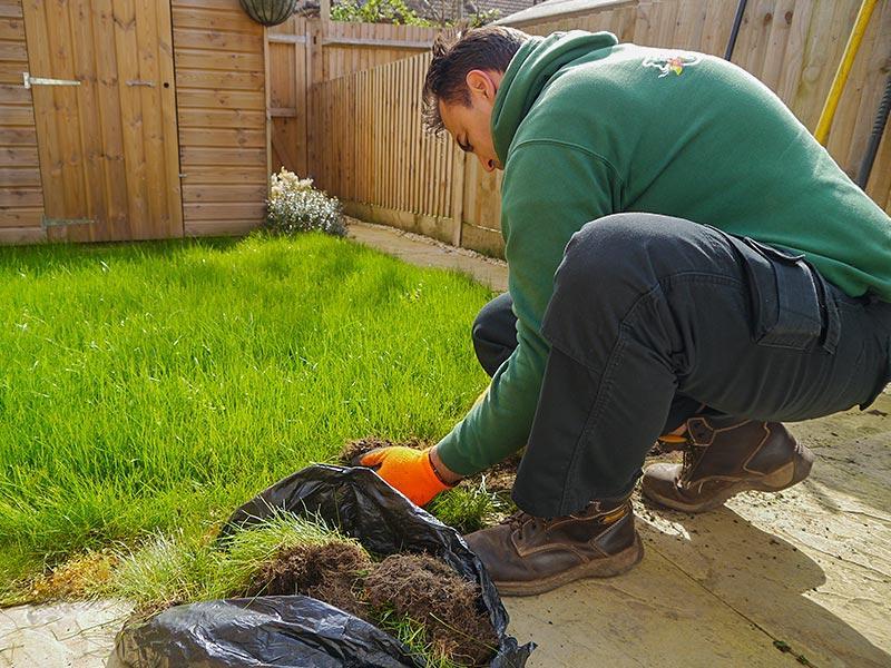 removing turf