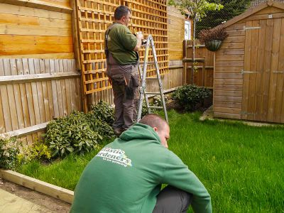 lawn edging, trellis installation in Tooting