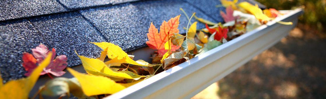 when to clean clogged gutters